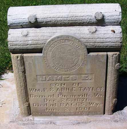 TAYLOR, JAMES E - Carbon County, Wyoming | JAMES E TAYLOR - Wyoming Gravestone Photos