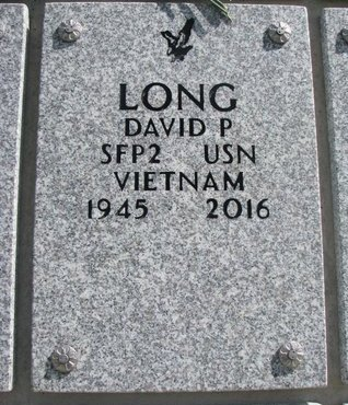 LONG, DAVID P. - Natrona County, Wyoming | DAVID P. LONG - Wyoming Gravestone Photos